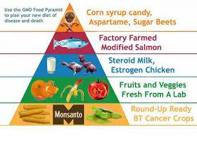 Ishrana i uticaj čoveka na ishranu u 21 veku