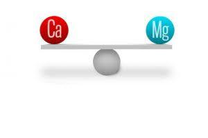 Mineralne materije  Kalcijum i Magnezijum