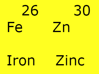 Minerals and how important they are  Iron and Zinc