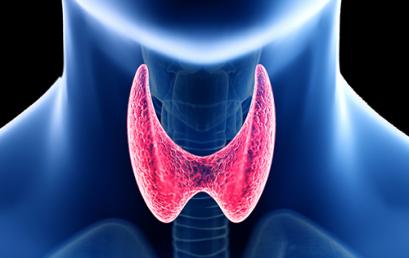 Ishrana i bolesti štitaste žlezde